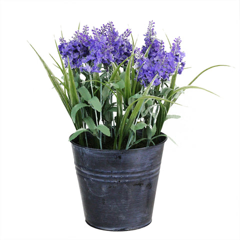 "12"" Purple and Black Potted Artificial Lavender Flower Arrangement"
