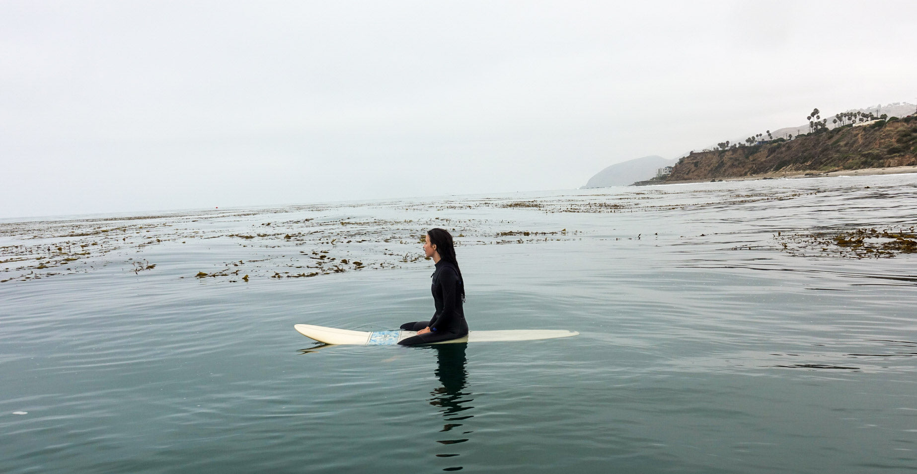 surfing among kelp beds