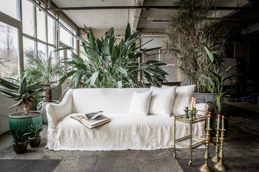 Greener Living with TopEco Home