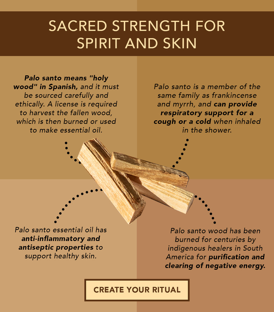 What S So Special About Palo Santo Osmia Organics