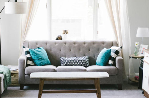 Sofa With Pillows In Front of a Net Curtain