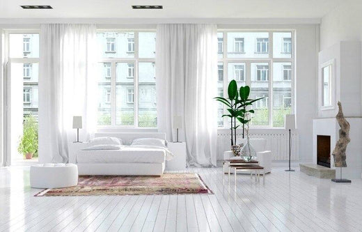 wide white living room with 3 white windows and a white sofa and 2 green plants as the only color