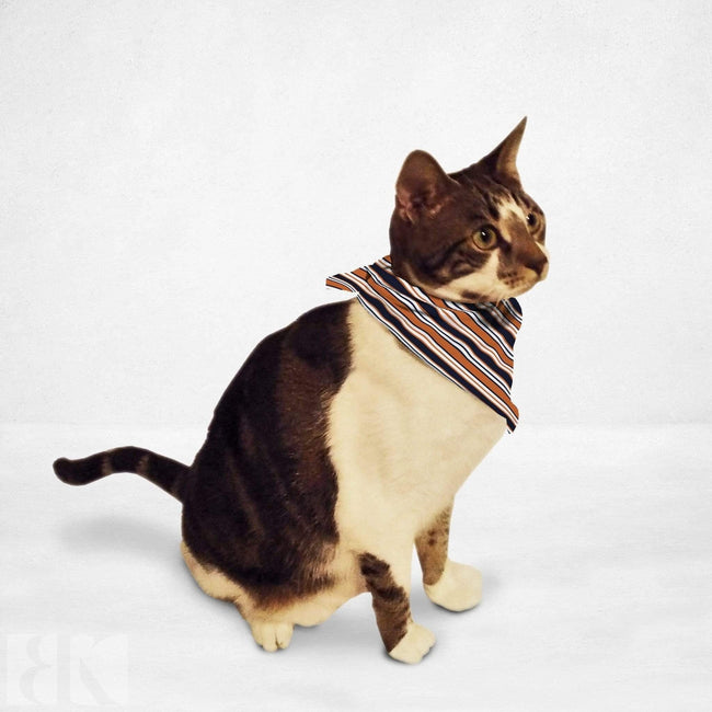 Retro Stripes Cat & Dog Bandana-BK Variety Market
