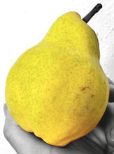 Load image into Gallery viewer, Bartlett Pear Jam