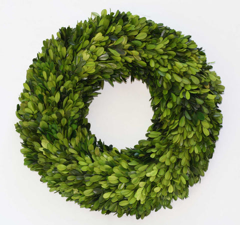 Preserved Boxwood Wreath 16""
