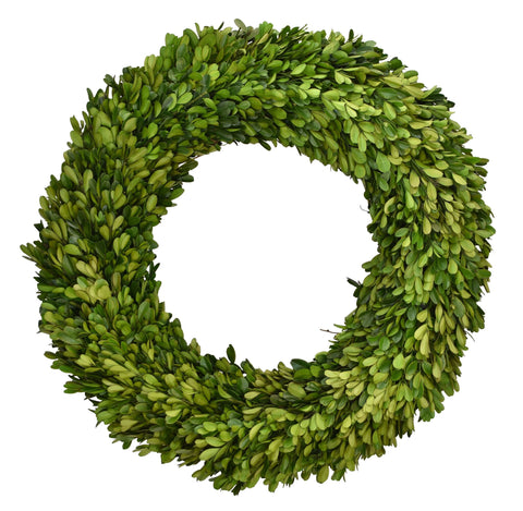 Preserved Boxwood Wreath 24""