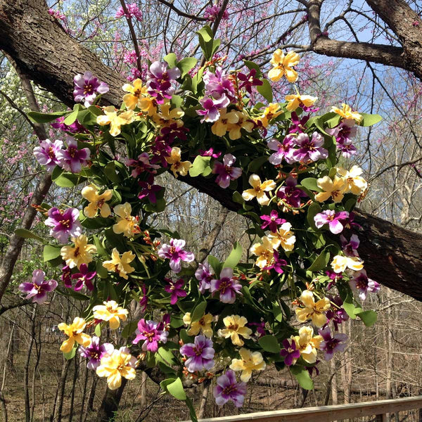 "Fresh Picked Pansies Wreath - 22"" - 5"