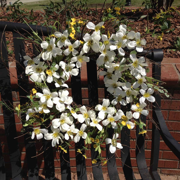 "Blooming Dogwood Spiral Wreath - White - 22"" - 1"