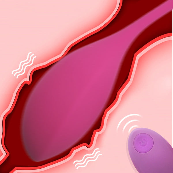 Remote Wireless Vibrator, Vagina Clitoris Simulator
