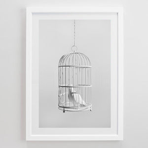 """Caged Bird"" Limited Edition Print"