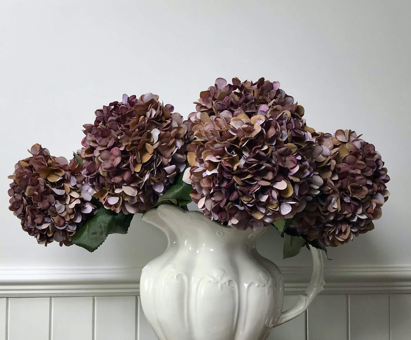 Autumn Purple Hydrangea