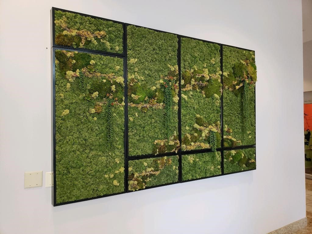 Large moss wall with natural elements