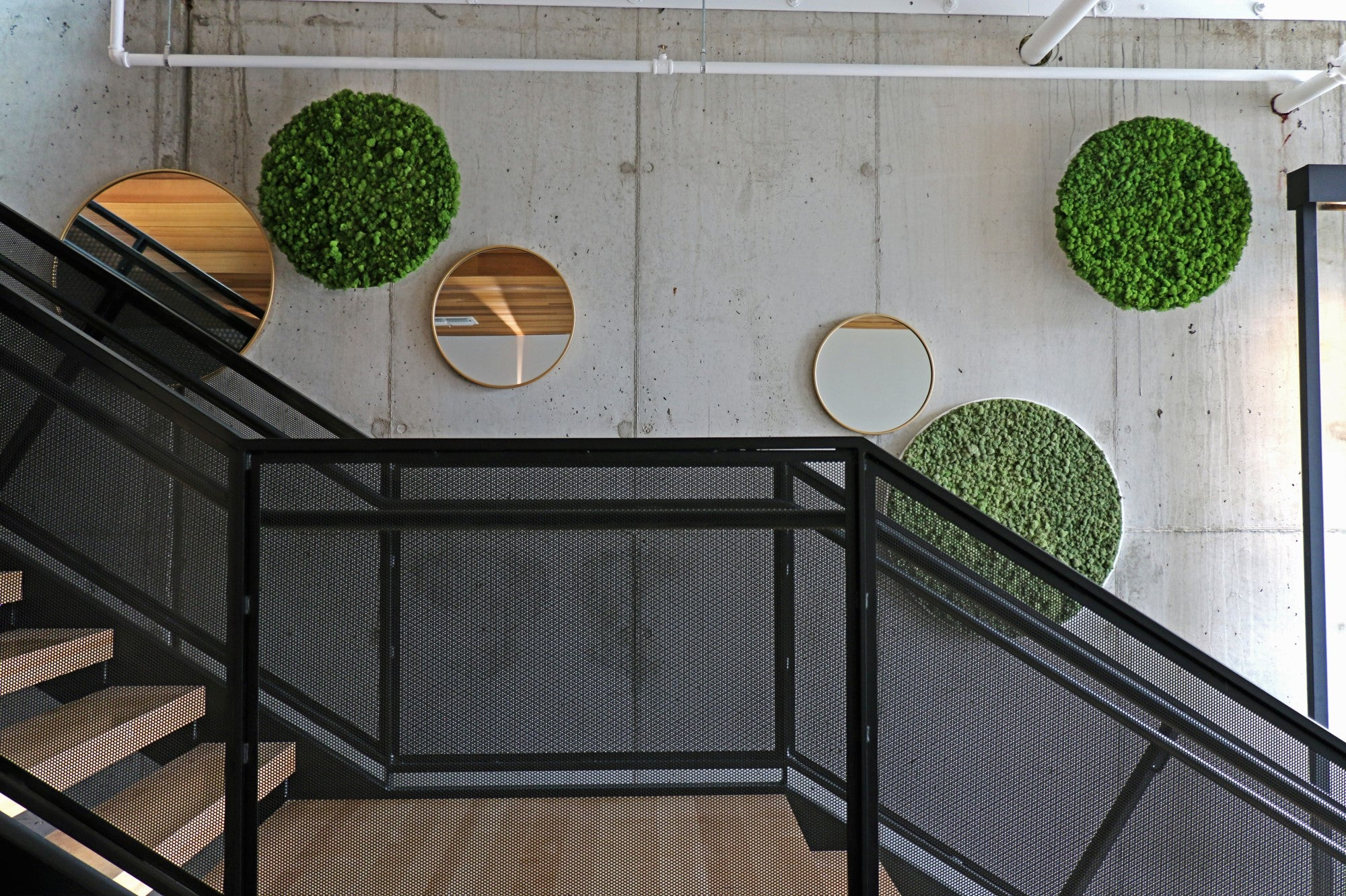 A staircase wall lined with large moss circles in various shades of green, interspersed with round mirrors.