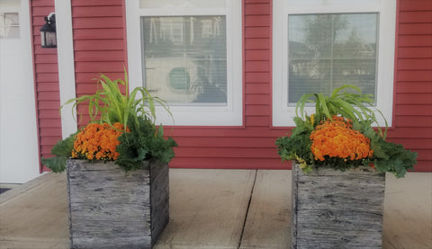 Fall residential container planting display