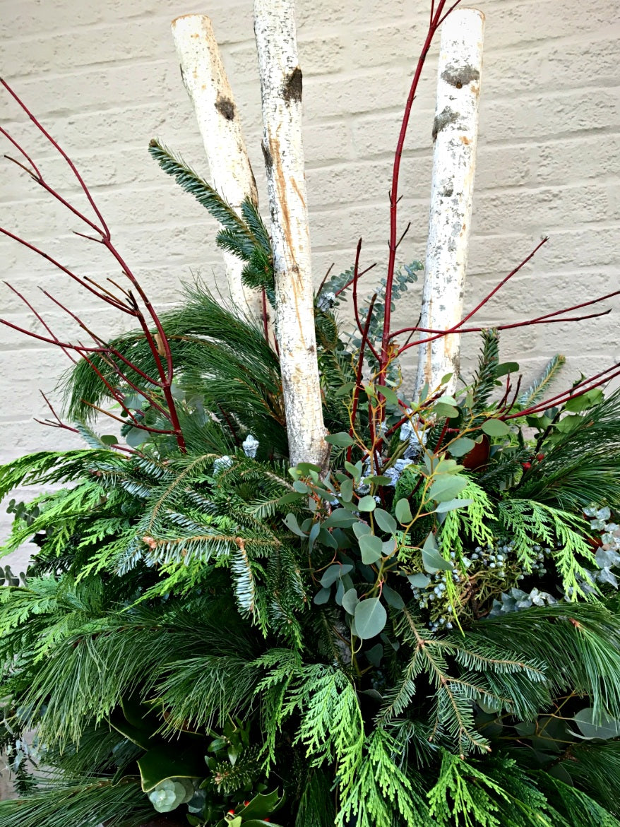 Winter greenery container design in Downtown Columbus, Ohio.