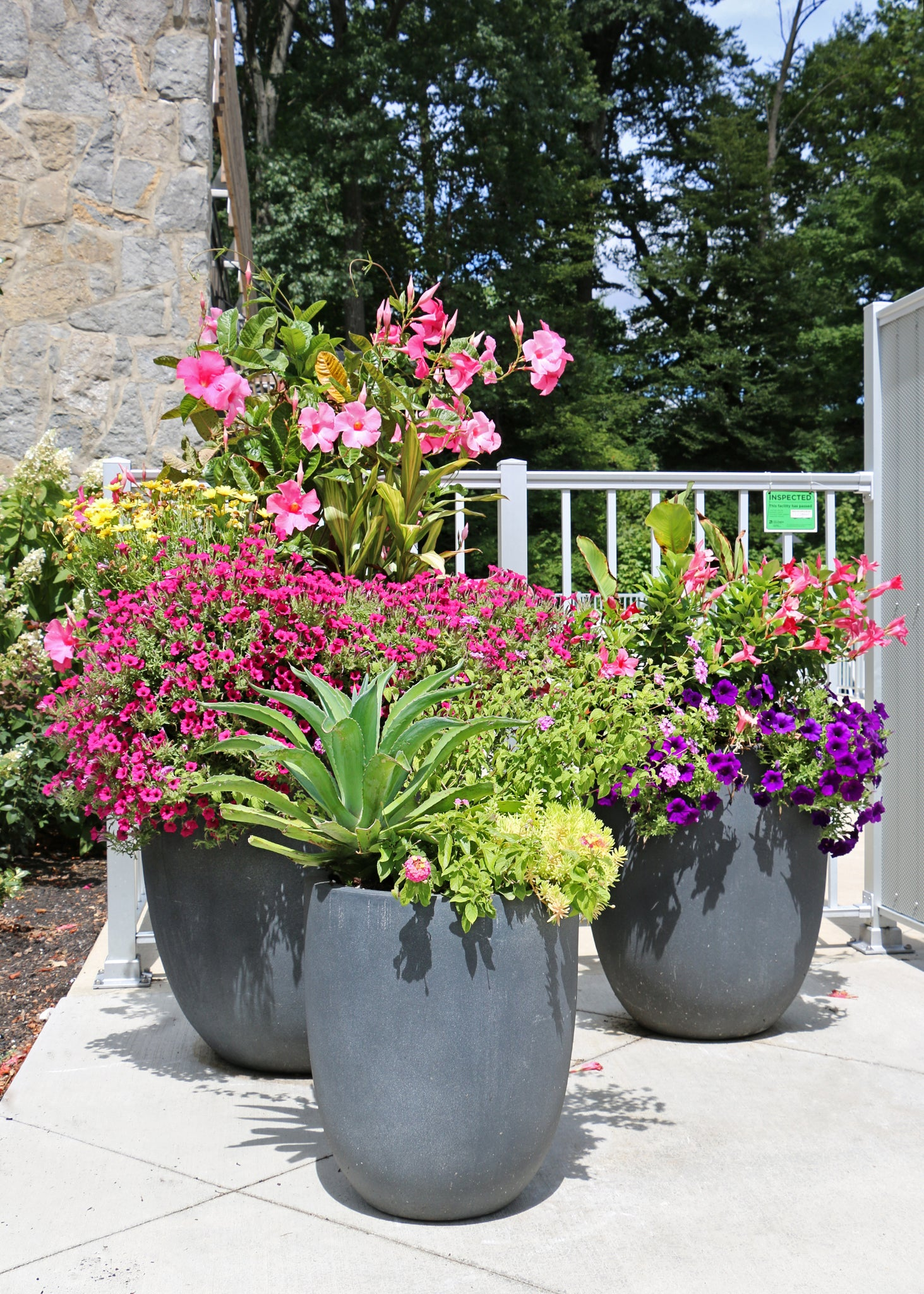 Custom container planting trio for a commercial account in Columbus, Ohio, by Oakland Green Interiors.