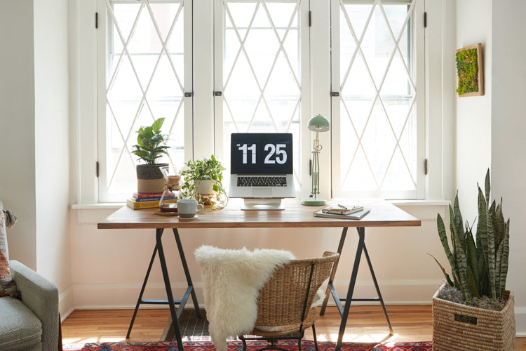 Easy Home Office: Low maintenance beauties that look great anywhere