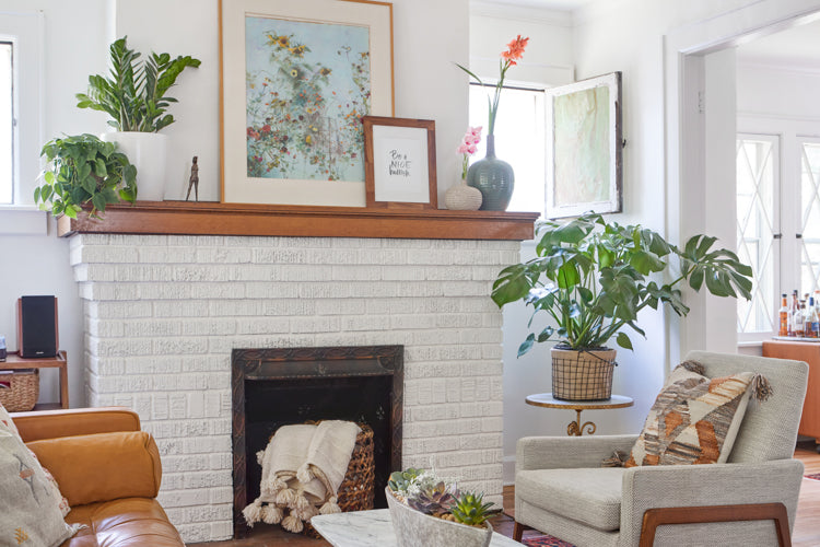 Living & Breathing Space: Beautiful plants for bright, open spaces