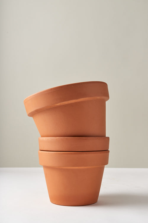 Terracotta Plant Container and Saucer Insert
