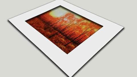 Ready To Sell Matted Fine Art Prints