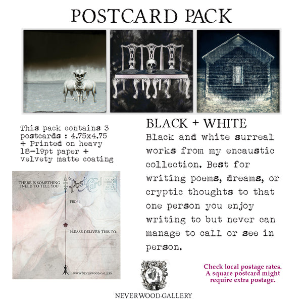 Postcard Pack: Black + White