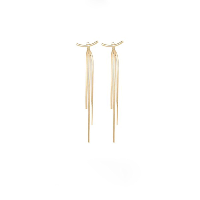 Long Tassel Earrings-Sleek Metal Chain Earrings