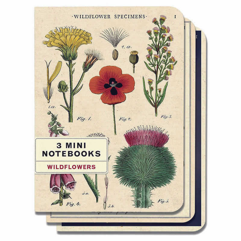 MINI LIBRETAS WILDFLOWERS