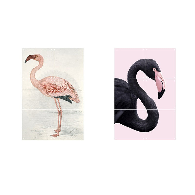 FLAMINGO FEVER (DOBLE CARA)