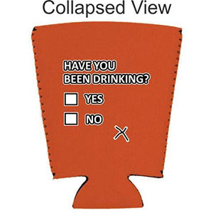 Have You Been Drinking? Pint Glass Coolie