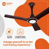 Orient Electric i-Float 1200mm energy efficient ceiling fan with Inverter Technology (Lakeside Brown)