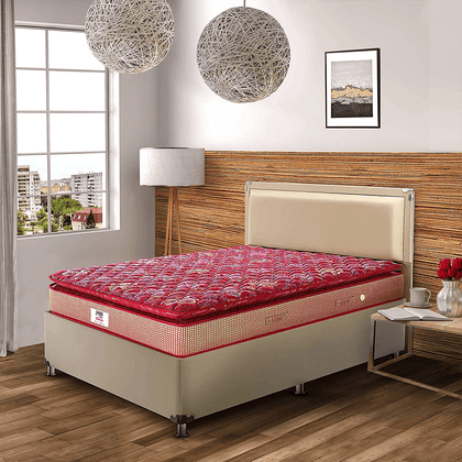 Peps Restonic Bonnell Sanibel Pillow Top 6-inch Spring Mattress with Free Pillow