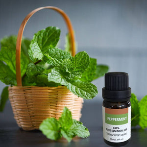 Essential Oil | Peppermint | Ecofriend
