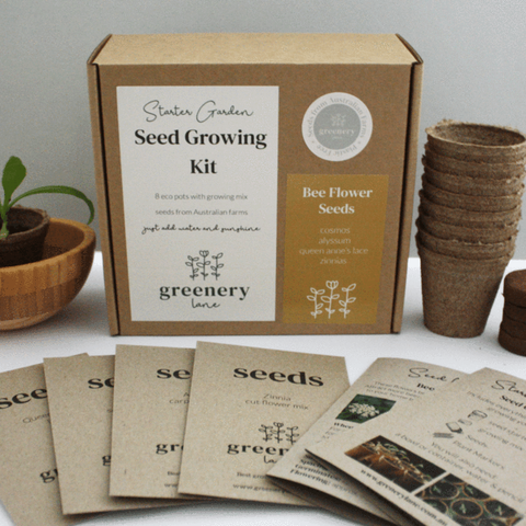 Seed Growing Kit by Greenery Lane for Christmas Gift Idea