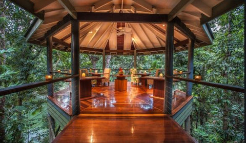 Silky Oaks Eco Lodge Daintree Rainforest Travel Inspiration