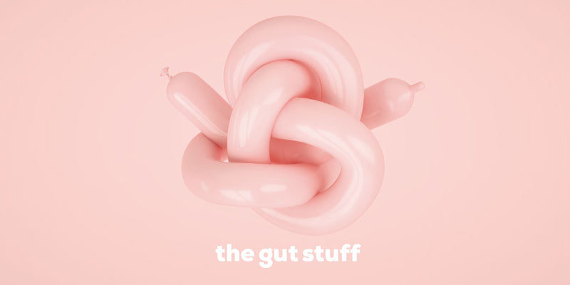 How a Healthy Gut Can Support a Healthy Immune System