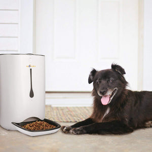 Automatic Pet Food Dispenser for Cats and Dogs,