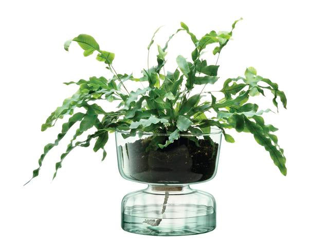 Self Watering Planter - 22cm Large