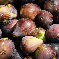 Fig Featured Ingredient - L'Occitane