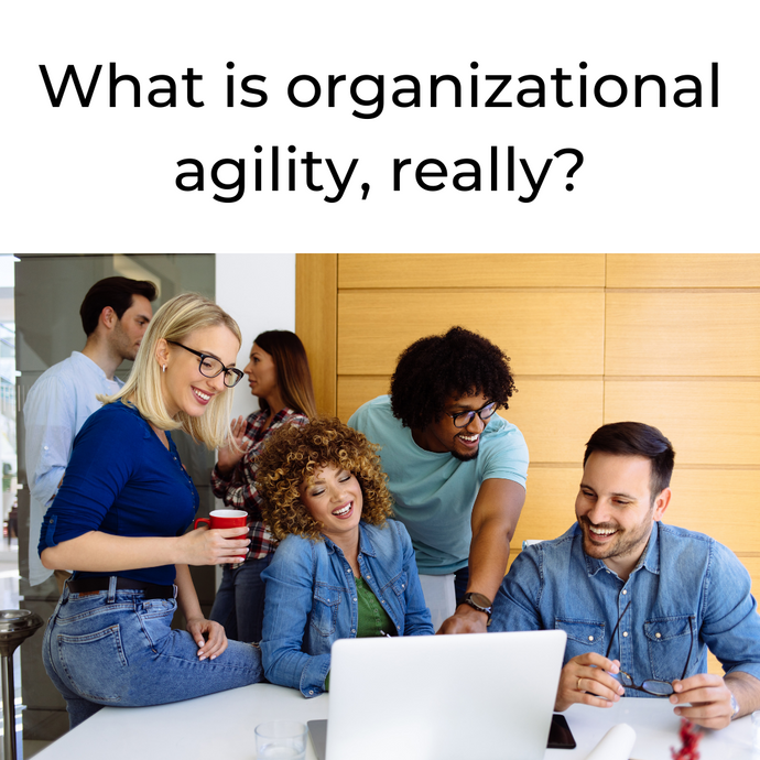 So what is organizational agility?