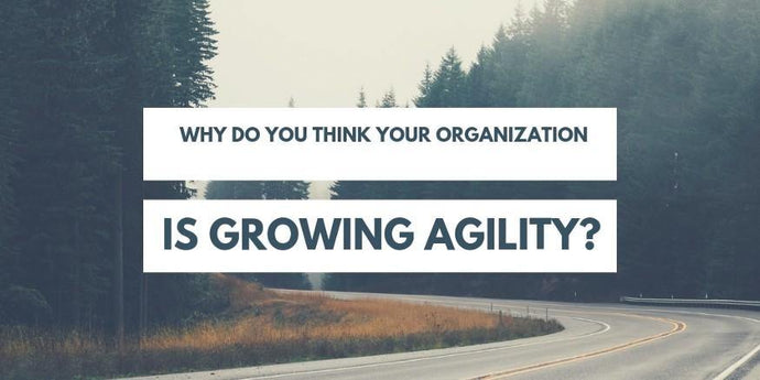 Why do you think your organization is growing agility?