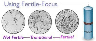 Fertile Focus: Pinpoint Ovulation 3 Days in Advance