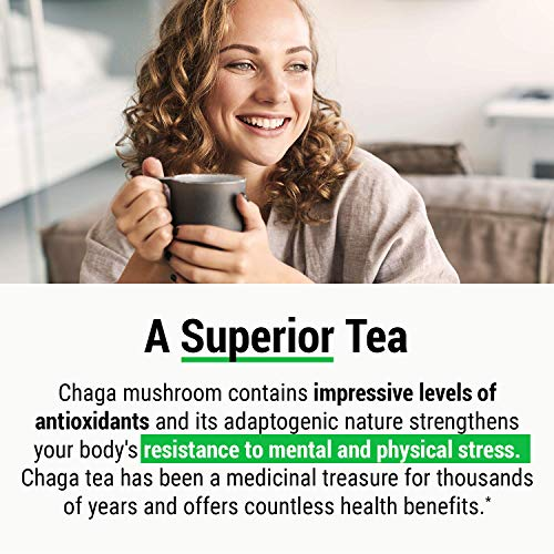 Sayan Siberian Chaga Mushroom Tea Organic Antioxidant Caffeine Free, Raw and Extract Blend, No Fillers Unbleached 20 Bag, Wild Harvested for Focus Concentration Energy Boost and Immune Support, Detox
