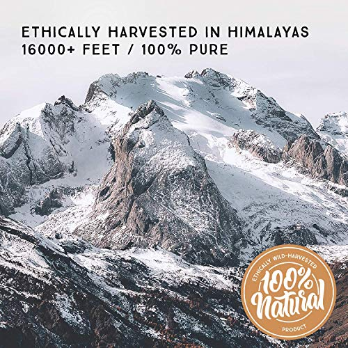 Pure Himalayan Shilajit, Original Solid Extract, 20 Servings, Organic Source of Fulvic Acid & Trace Minerals, Widely Used in Ayurveda, Superfood