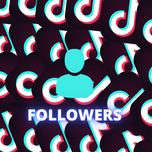 Followers TikTok