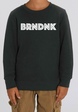 Load image into Gallery viewer, BRNDNK SWEATERS – Kids