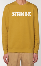 Load image into Gallery viewer, STRMBK SWEATER – Adults
