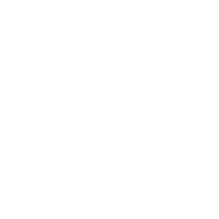 electric pinata logo inversed