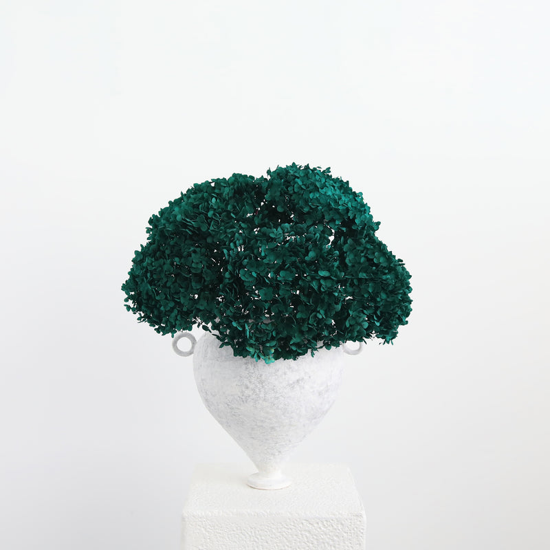 Preserved Hydrangea- Emerald Green