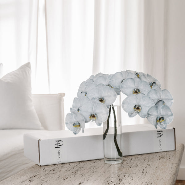 Orchid Gift Box - French Blue