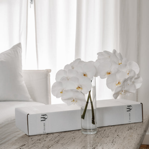 Orchid Gift Box - White